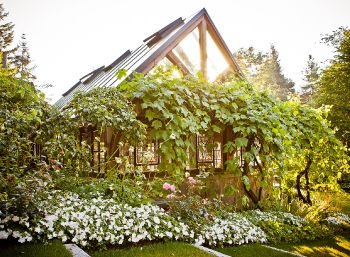 Grape-House-1